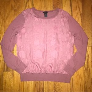 Ann Taylor Sheer Front Sweater